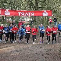 2014-02-22 Kreiswaldlaufmeisterschaften Lette 13